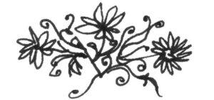 fleurs de bouilloire